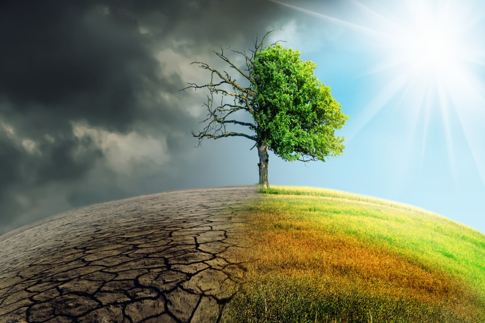 climate change report from IPCC